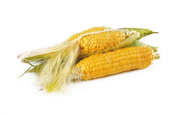 Как правильно готовить и принимать кукурузные рыльца для похудения, результаты и отзывы худеющих
