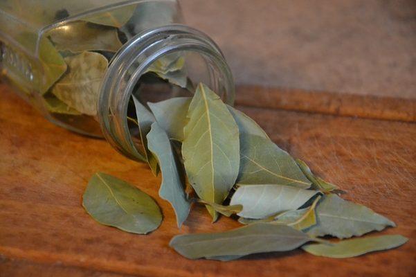 напиток из лаврового листа для похудения